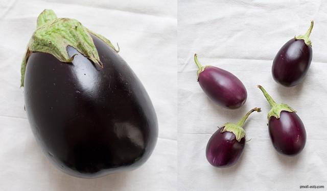 Eggplant Varieties from small-eats.com