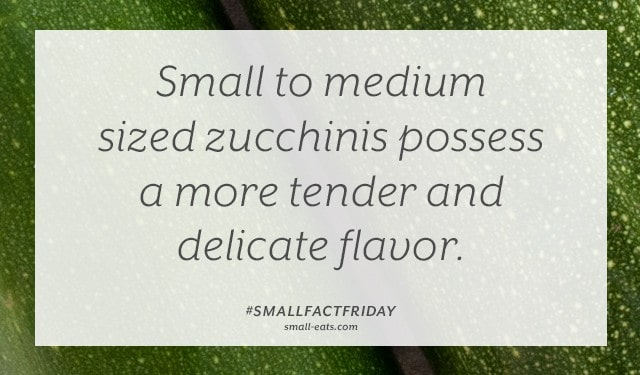 Small Fact Friday: Zucchini Flavor from small-eats.com