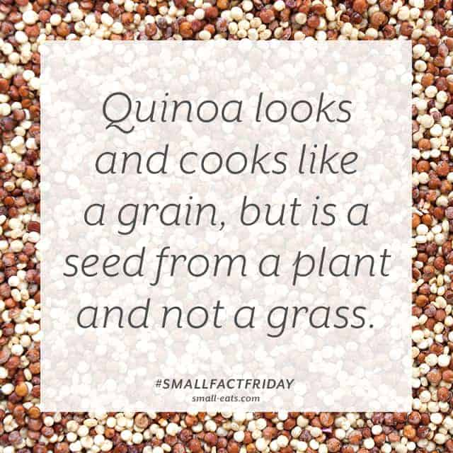Small Fact Friday: Quinoa from small-eats.com