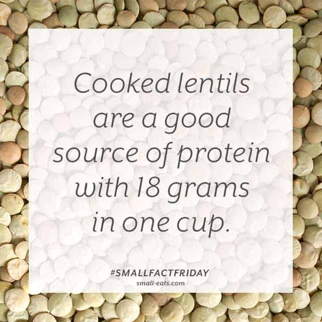 Small Fact Friday: Lentils and Protein from small-eats.com