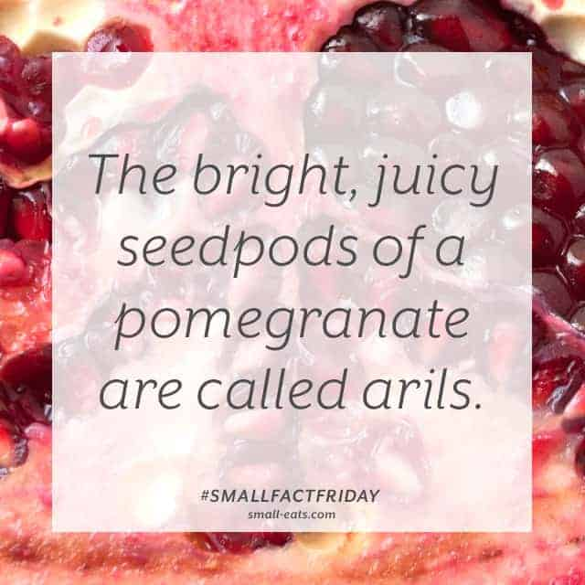 Small Fact Friday: Pomegranates from small-eats.com
