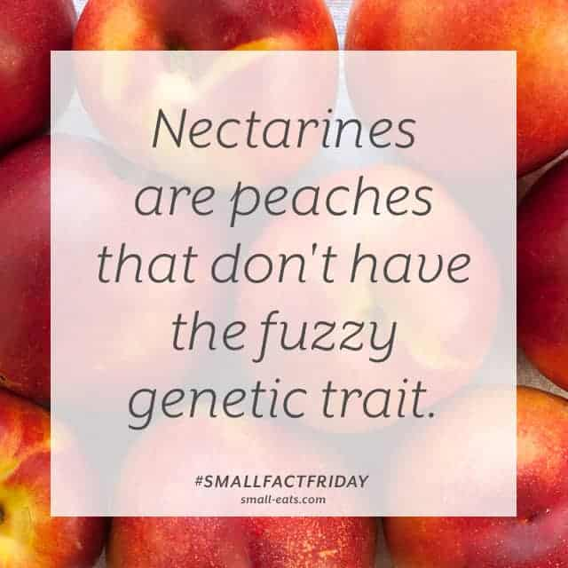 Small Fact Friday: Nectarines and Peaches from small-eats.com