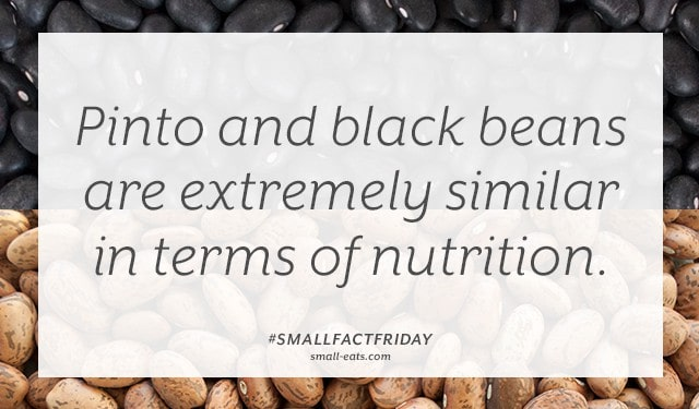 Small Fact Friday: Pinto Beans vs Black Beans from small-eats.com