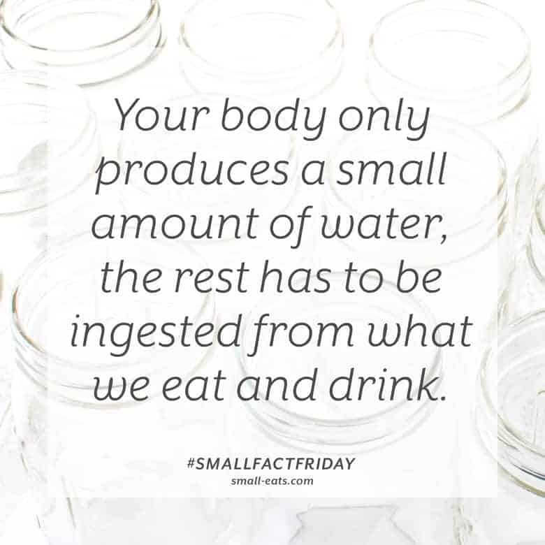 Your body only produces a small amount of water, the rest has to be ingested from what we eat and drink. #smallfactfriday