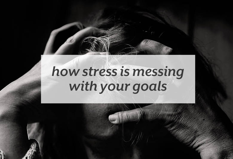 Food and fitness aren't the only factors in reaching your health goals. | How Stress is Messing with your Goals from small-eats.com