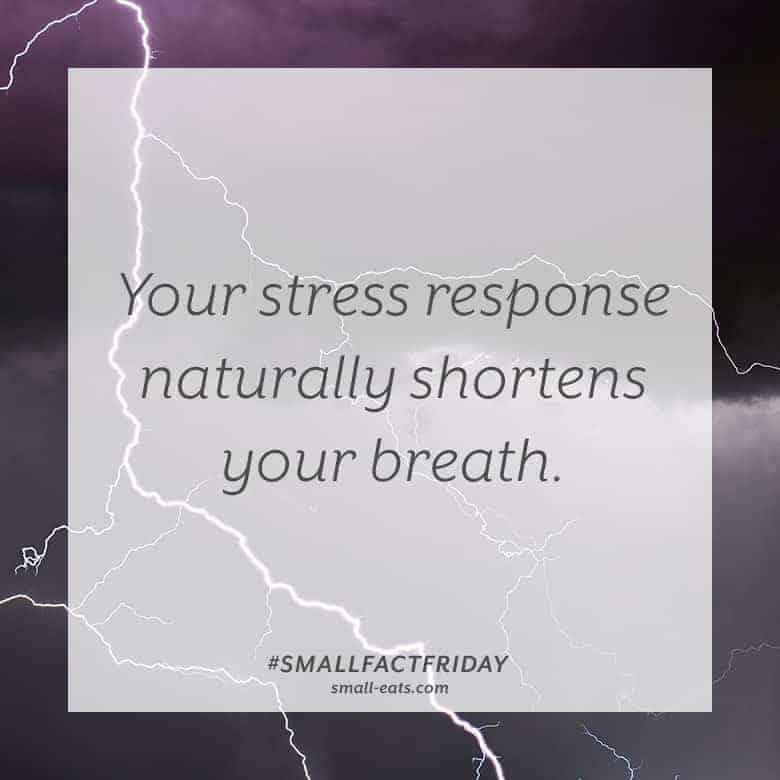 Your stress response naturally shortens your breath. #smallfactfriday