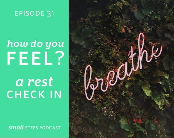 Small Steps Podcast #31: How Do You Feel? A Rest Check In from small-eats.com