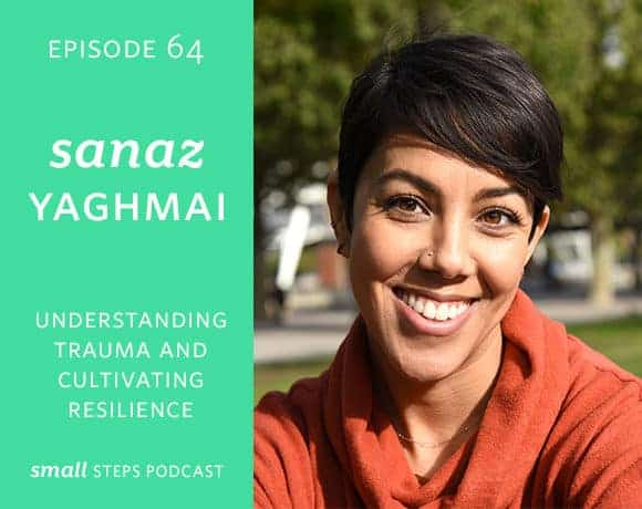 Small Steps Podcast #64: Understanding Trauma and Cultivating Resilience with Sanaz Yaghmai
